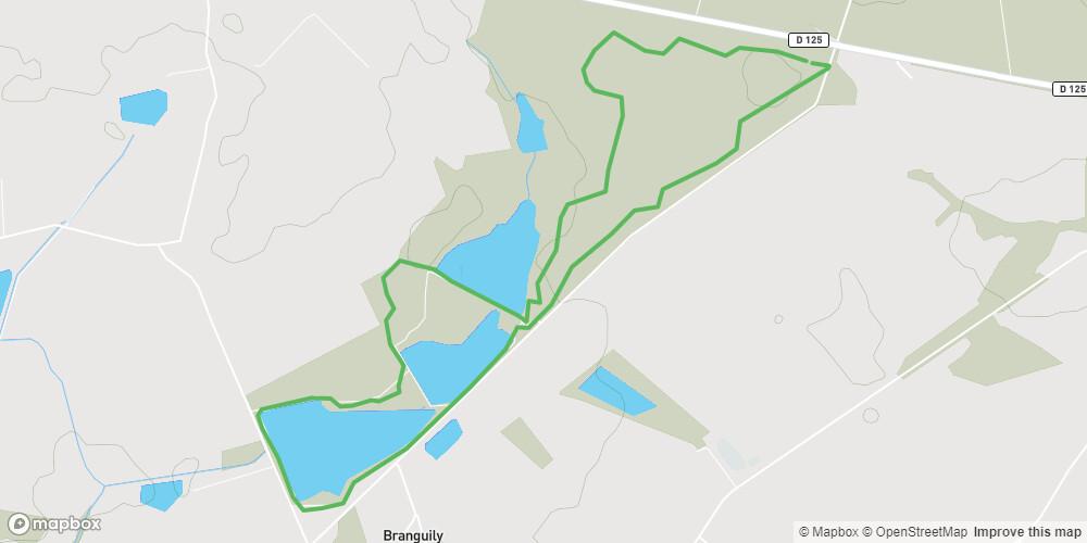 Circuit des étangs et de la forêt de Branguily